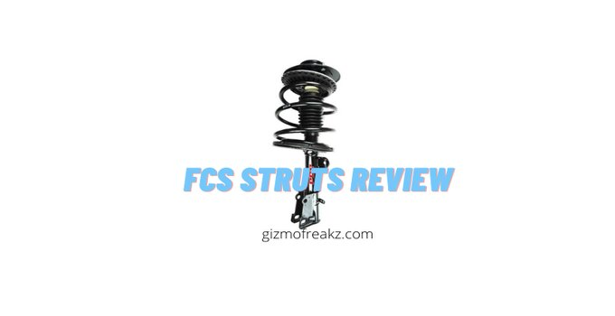 Fcs Struts Review featured image